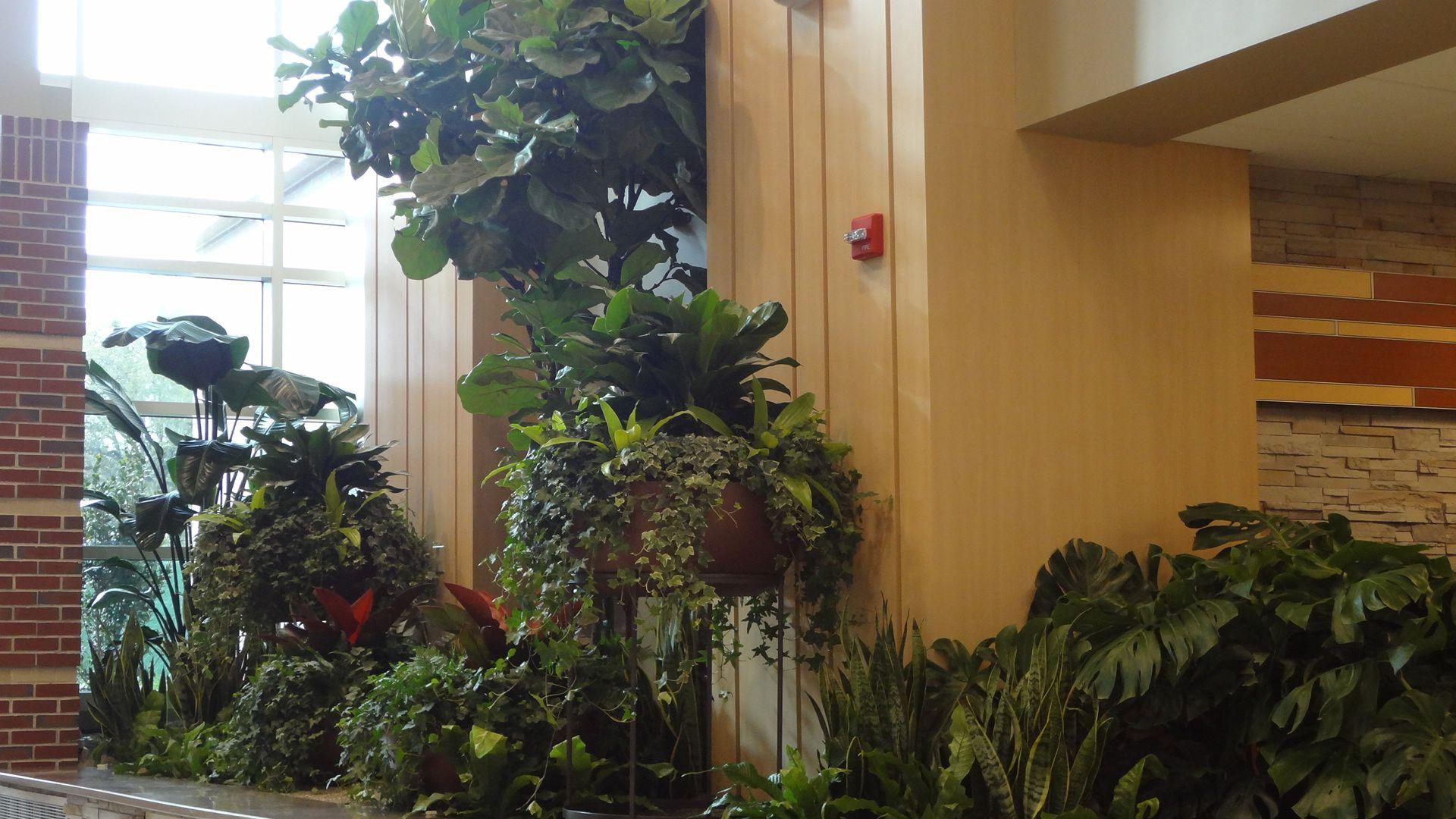 Panama City landscaping design company