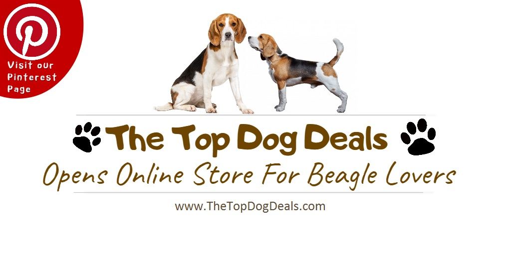 The top dog deals opens online store for beagle lovers for The best online store