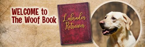The Woof Book National Labrador Retriever Day