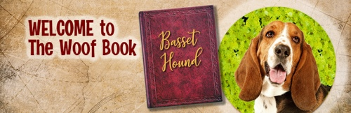 National Basset Hound Day at The Woof Book