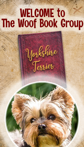 National Yorkshire Terrier Day at TheWoofBookGroup.com