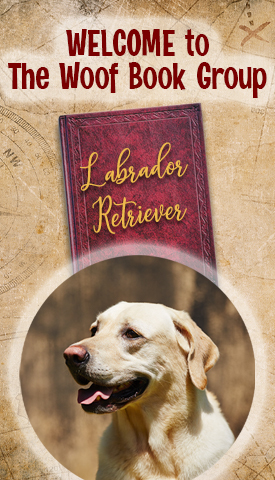 National Labrador Retriever Day on TheWoofBookGroup.Com