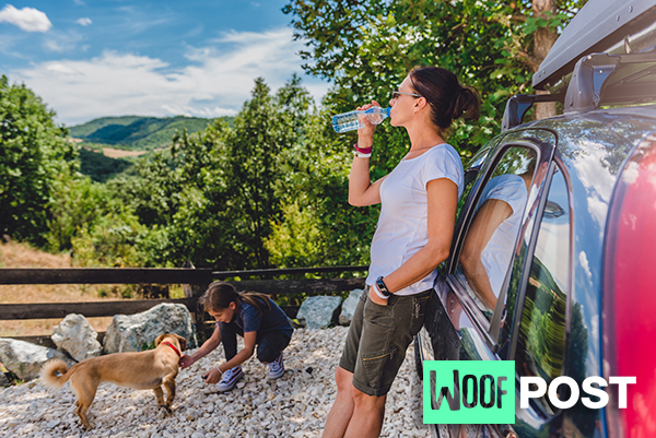 WoofPost.Com Road Trips With Your Dog