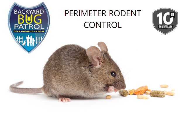 Perimeter Rodent Control - Backyard Bug Patrol