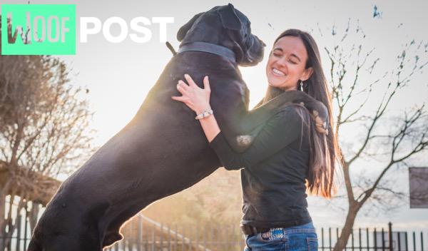 WoofPost.com - Big Dogs Rock!