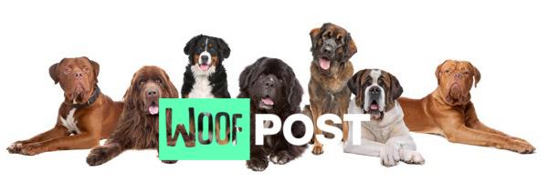 WoofPost.Com - Big Dogs Rock