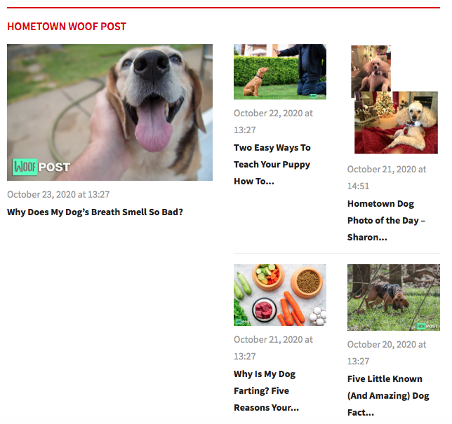 PhoenixNewsAndTalk.Com - Announces the Launch of Hometown Woof Post