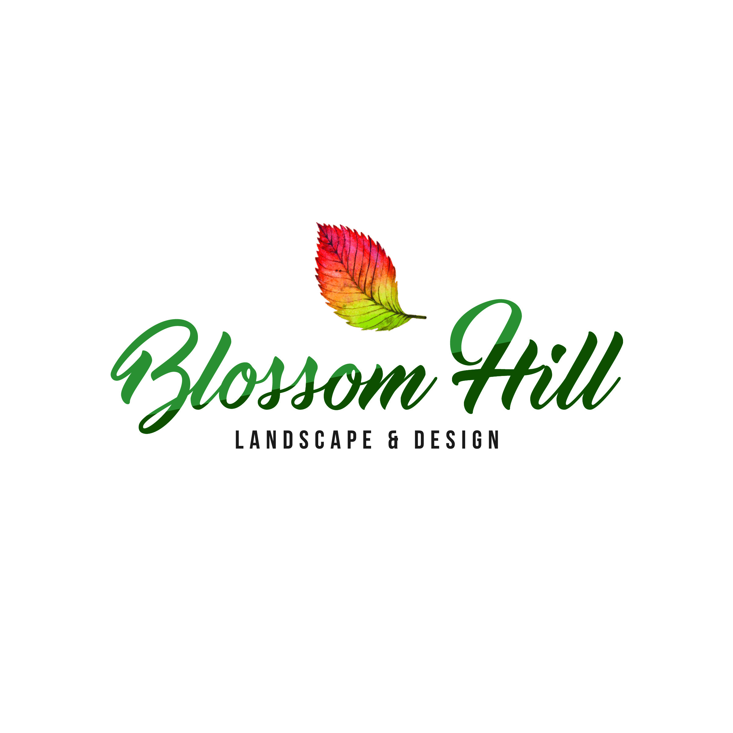 Blossom Hill Landscape Design Media Room